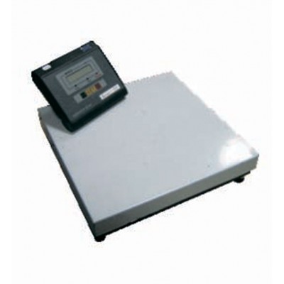 Весы электронные товарные ВН-200-1-А (СИ) (400х400)